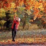همچون برگ های پاییزی زیر پاهایشان له کردند