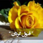 جانا قبول گردان این جست و جوی ما را (مولانا)