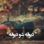 حیلت رها کن عاشقا دیوانه شو دیوانه شو (مولانا)