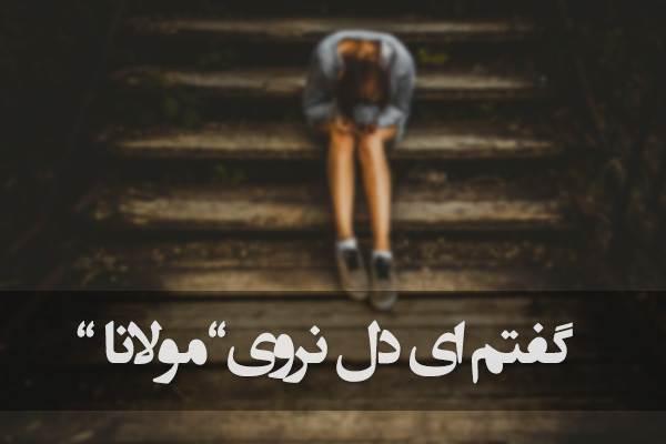 گفتم ای دل نروی خار شوی زار شوی (مولانا)