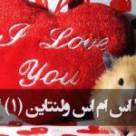 اس ام اس عاشقانه ویژه تبریک ولنتاین (روز عشق)